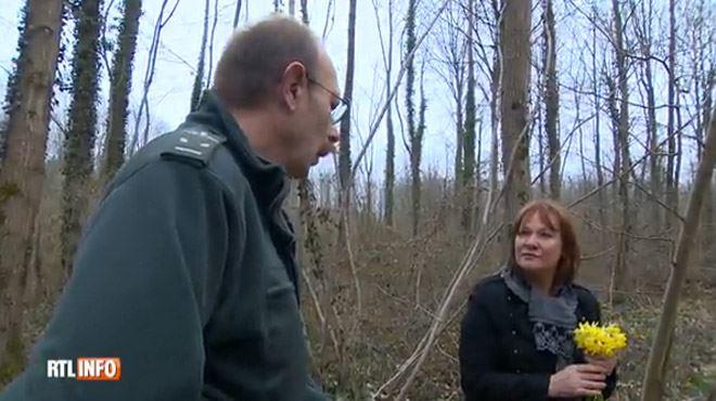 Cueillir des jonquilles dans les bois, gare à l'abus- vous risquerez d'être déçu 1