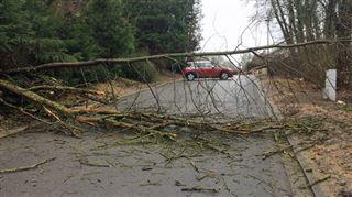 Attention sur les routes- des vents violents balaieront la Belgique jusqu'à 23h (photos) 3