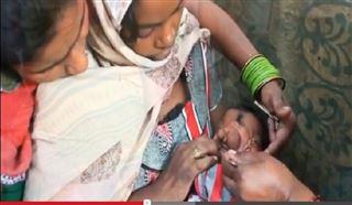 Né avec une trompe d'éléphant, ce bébé est vénéré en Inde (vidéo) 27