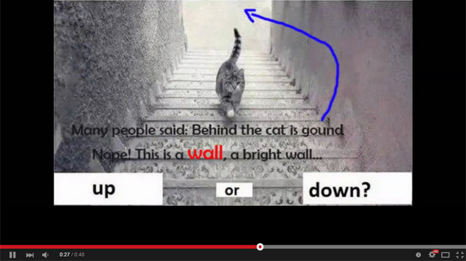 D apr s vous ce chat monte t il ou descend il les for Bureau qui monte et descend