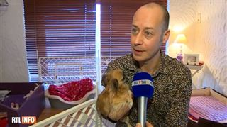 Philippe est dévasté- le voleur de ses 7 chiens n'est autre que son ex... et ils sont tous morts de faim 5
