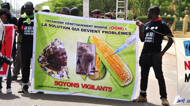 Le monde entier se ligue contre le géant Monsanto- Nous devons savoir ce que nous faisons entrer dans nos corps 1