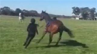 Cette cavalière énervée hurle f*** y**, piece of shit sur son cheval- elle va vraiment le regretter (vidéo) 4