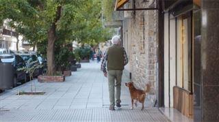 Cette histoire bouleversante entre un chien et son maître va vous faire réfléchir (vidéo) 5