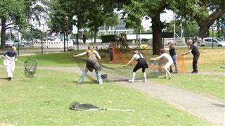 Liège- filets, épuisettes de capture et cages... que vont devenir les lapins de la Boverie, menacés par les travaux? (photos) 4