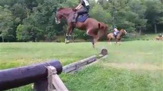 Hilarant - ce cheval saute un obstacle comme un lapin (vidéo) 3